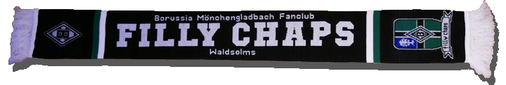 2016-fanschal-filly-chaps-waldsolms_schatten_light